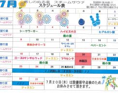 H29.7譛医〓繧区ケッ繧ケ繧ア繧ク繝・繝シ繝ォ-1