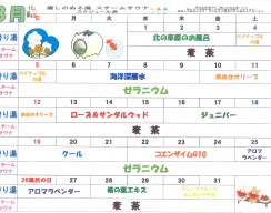 H30.8月ぬる湯スケジュール-1
