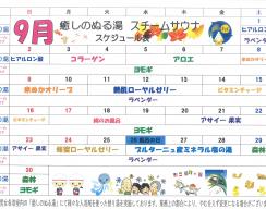 H30.9月ぬる湯スケジュール-1